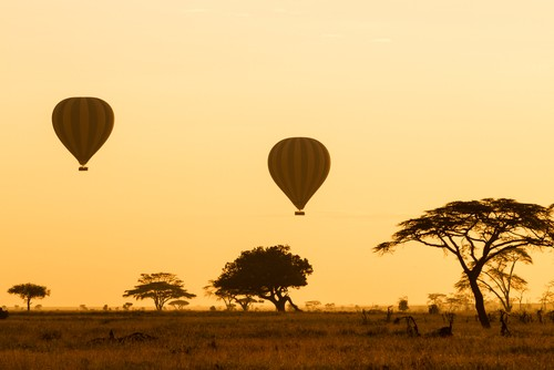 Day Hot Air Ballooning in Serengeti