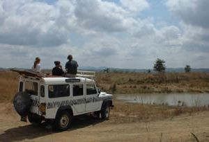 game drive vehicle