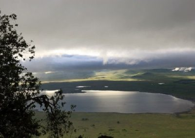 What To Do In Lake Manyara National Park