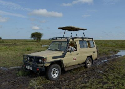 Tanzania Holiday Safari