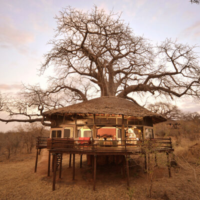Lodge of The month August 2020- Tarangire Treetops